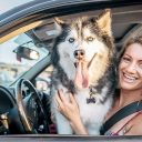 Safe ways to transport your dog in your vehicle
