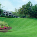Landscaping services that cover commercial demands